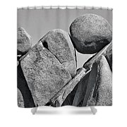 Joshua Tree Rocks Shower Curtain