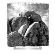 Joshua Tree Rocks Joshua Tree Shower Curtain