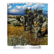 Joshuas And Sage Shower Curtain
