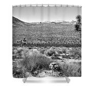 Josua Tree - Geology Tour Road Shower Curtain