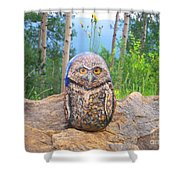 Journey Of Burrowing Owl Shower Curtain