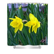 Jovial Jonquils Shower Curtain