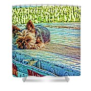 'jovie' Truckin Dogs Need Breaks Too Shower Curtain