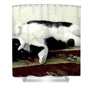 Joyful Kitty Shower Curtain