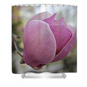Joyful Pink Magnolia Shower Curtain