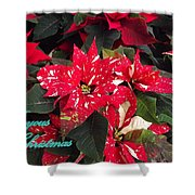 Joyous Christmas Shower Curtain
