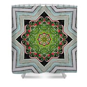 Jubilant Mandevilla Kaleidoscope Pattern Shower Curtain