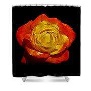 Judy Garland Rose Shower Curtain