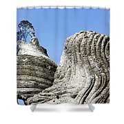 Jug Of Life Shower Curtain