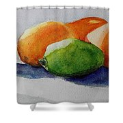Juices Shower Curtain