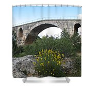 Julian Bridge Provence Shower Curtain