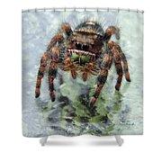 Jumper Spider 4 Shower Curtain