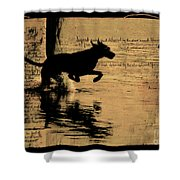 Jumping Shower Curtain