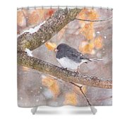 Junco In Snow Shower Curtain