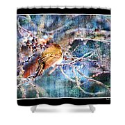 Junco On Icy Branch - Digital Paint II Shower Curtain
