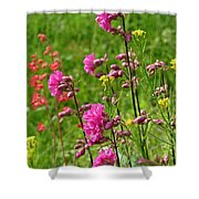 June Blooms Shower Curtain