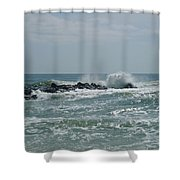 June Surf Shower Curtain