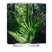 Jungle Fern Shower Curtain