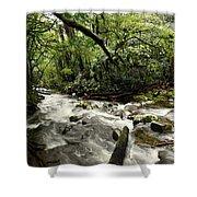 Jungle Flow Shower Curtain