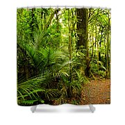 Jungle Scene Shower Curtain by Les Cunliffe