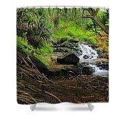 Jungle Stream Kauai Shower Curtain