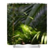 Jungle Web Shower Curtain