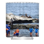Junior Lifeguards And Sea Lions Shower Curtain