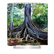 Jurassic Trees Shower Curtain