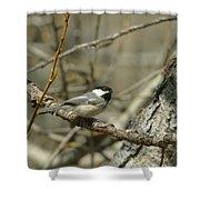 Just A Little Birdie Shower Curtain