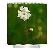 Just A Little White Flower Shower Curtain