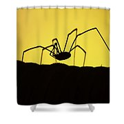 Just Creepy Shower Curtain