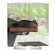 Just Five More Minutes Shower Curtain