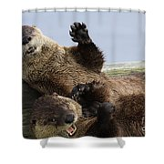 Just For Laughs Shower Curtain