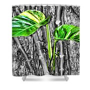Just Green 2 By Diana Sainz Shower Curtain