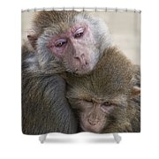 Just Hold Me Now Shower Curtain