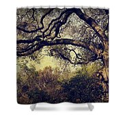 Just How It Ought To Be Shower Curtain by Laurie Search