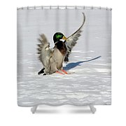 Just Like Skiing Shower Curtain