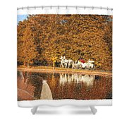 Just Married - A Fairytale Shower Curtain
