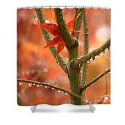 Just One Leaf Shower Curtain