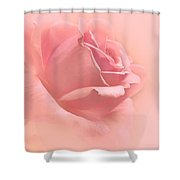 Blush Pink Rose Flower Shower Curtain