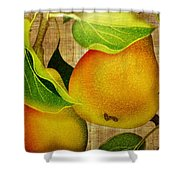 Just Pears Shower Curtain