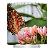 Just Pink Butterfly Shower Curtain