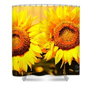 Just Two Shower Curtain