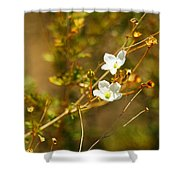Just Two Little White Flowers Shower Curtain