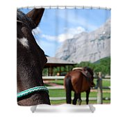 K Country Shower Curtain