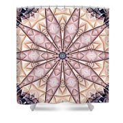 Kaleidoscope 20 Shower Curtain