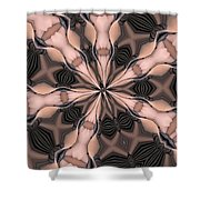 Kaleidoscope 27 Shower Curtain