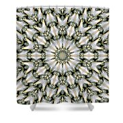 Kaleidoscope 28 Shower Curtain