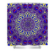 Kaleidoscope 33 Shower Curtain