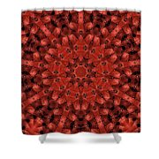 Kaleidoscope 60 Shower Curtain